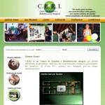 www.centroceri.com