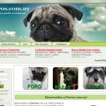 www.perros.com.uy